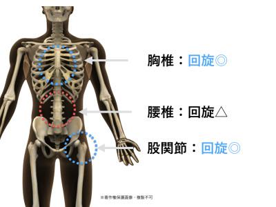 胸椎回旋エクササイズ.001