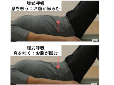 腹式呼吸の基本.002