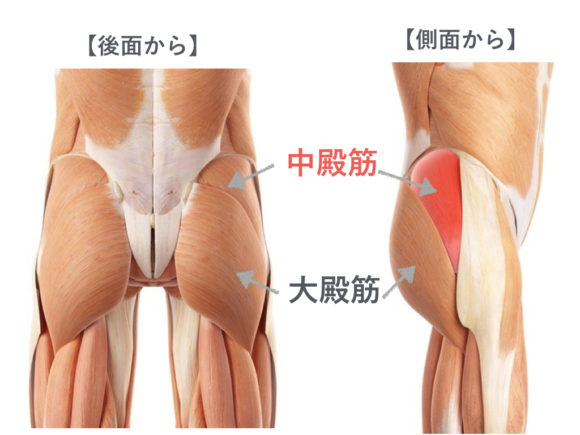 体幹と股関節の安定性を高める中...