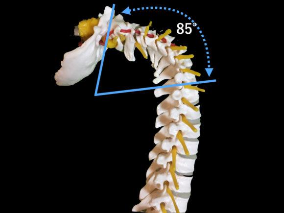 頭頸部の伸展可動域